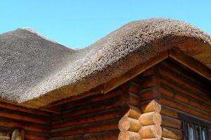 Крыша из камыша – особенности устройства и технология самостоятельного монтажа