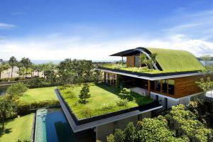 Что такое зелёная крыша и можно ли ее сделать своими руками?